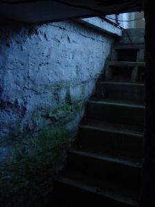 cellar-steps-201007-m